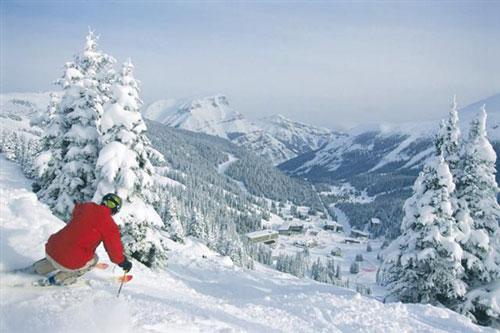 Winter Sports in Alberta